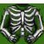 Skeleton Shirt (green)